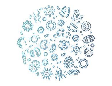 Film über Mikroorganismen
